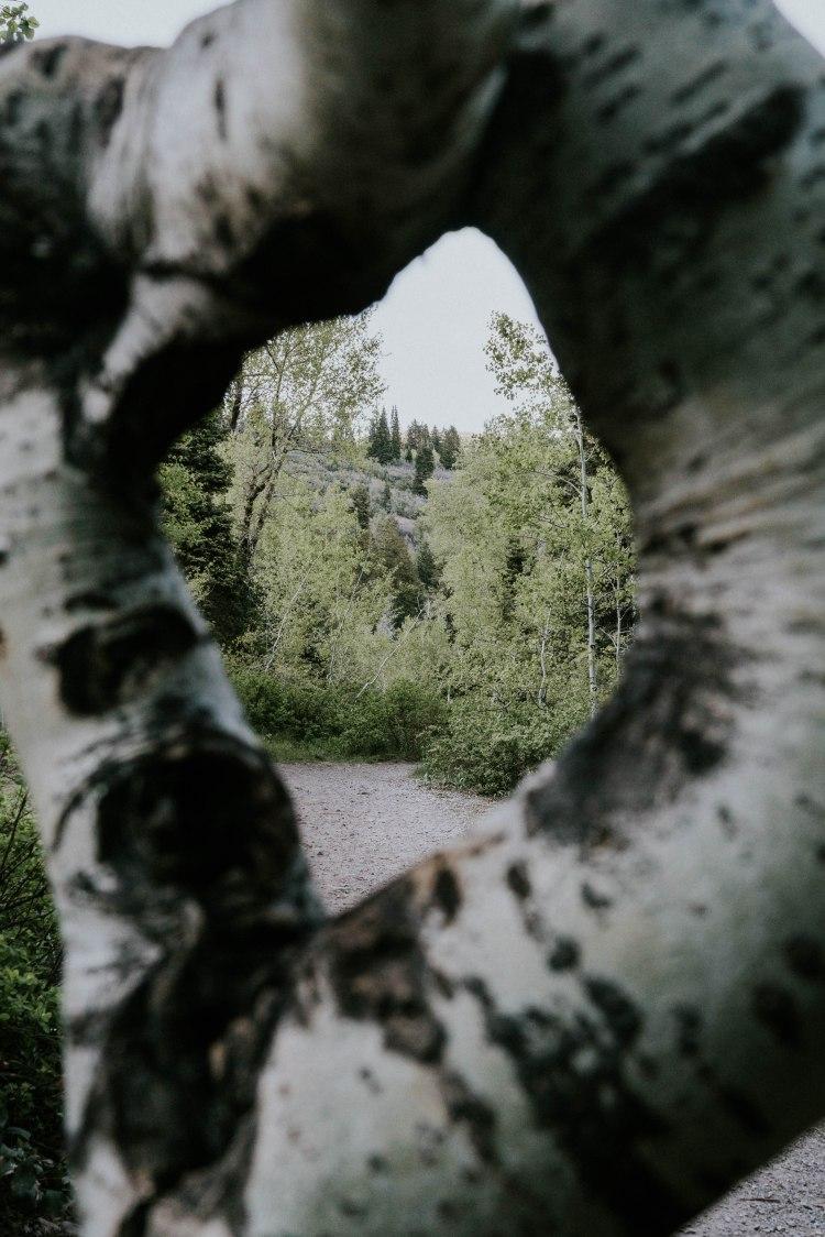 HikingStewart1